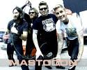 mastodon-262294.jpg