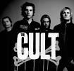 the-cult-474483.jpg