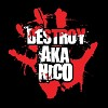 destroy-aka-nico-282044.jpg