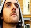 vovazil-vova-301375.jpg