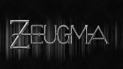 zeugma-471656.jpg