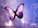 angels-smile-484626.jpg