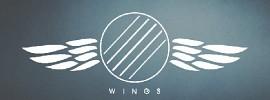 wingscrew-504117.jpg