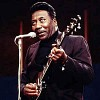 muddy-waters-595919.jpg
