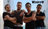 windrow-549795.jpg