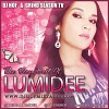 lumidee-101373.jpg