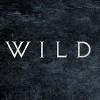 wild-the-band-577556.jpg