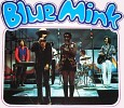 blue-mink-578257.jpg