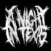 a-night-in-texas-579341.jpg