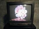 dandelion-hands-581766.jpg