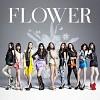 flower-591140.jpg