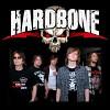hardbone-591127.jpg