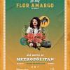 flor-amargo-621610.jpg
