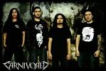 carnivored-624401.jpg